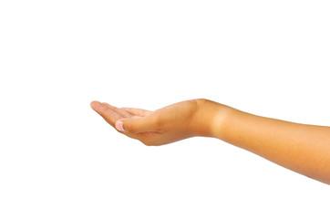 Female handhand holding isolated on white background
