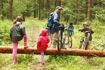 Fototapeta Wycieczka rowerowa - przeprawa przez powalone drzewo obraz