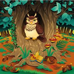 Photo sur Plexiglas Monde magique Scene with owl. Cartoon and vector illustration.