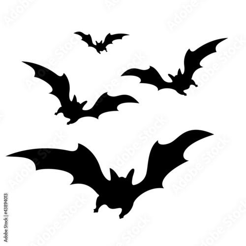 Funny Cartoon Bat Stock Image  GraphicStock