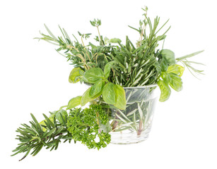 Glass with fresh Herbs