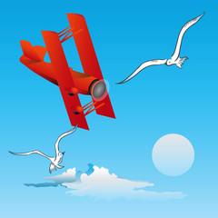 Spoed Fotobehang Vliegtuigen, ballon Risk of Flight - birds