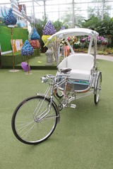 Three-wheel vehicle in garden