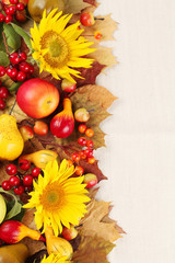 Autumn frame with fruits,pumpkins and sunflowers