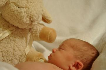 Baby and Lamb