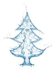 fir tree from water splash