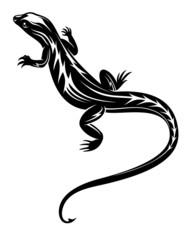 Black lizard reptile