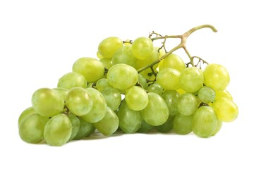 Grapes to white background