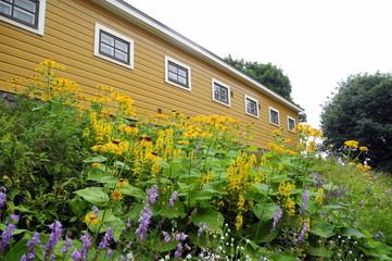Holzhaus mit Blumen