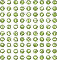 Button Set, grün