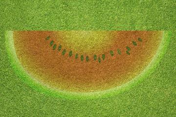 Watermelon slice on green grass background