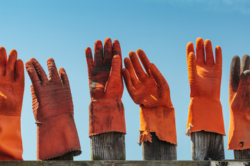 Orange rubber gloves in a wooden fence
