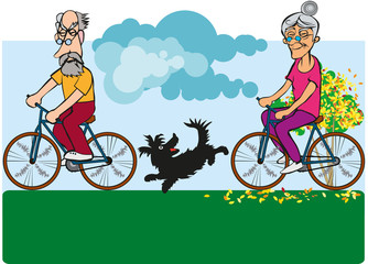 Дедушка и бабушка