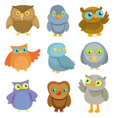 Collection of vector cartoon owls