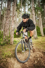 Mountain biker on pathway in forest