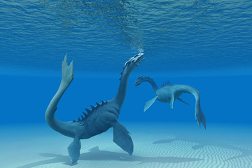 Two Sea Dragons
