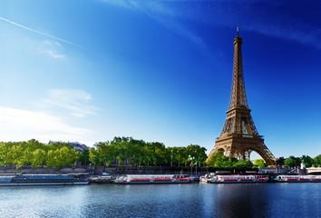 Seine in Paris with Eiffel tower Wall mural