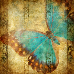 Papiers peints Papillons dans Grunge vintage background with blue butterfly over grunge wallpaper