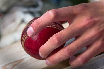 Cricket baller