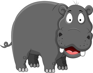 hippopotamus cartoon