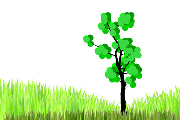 the tree  and  green grasses on white background