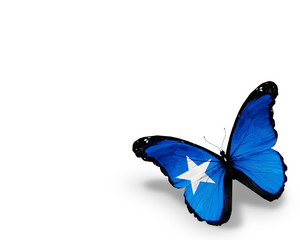 Somalian Islands flag butterfly, isolated on white background