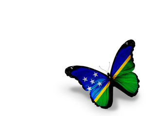 Solomon Islands flag butterfly, isolated on white background
