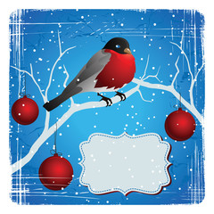 Bird on a tree in winter. Christmas and New Year's card.