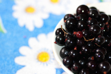 black currant in a plate