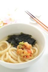 Japanese cuisine, Udon noodles with tempura