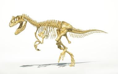 Allosaurus skeleton photo-realistic, scientifically correct.