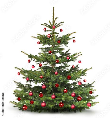 geschm ckter weihnachtsbaum stockfotos und lizenzfreie bilder auf bild 44314458. Black Bedroom Furniture Sets. Home Design Ideas