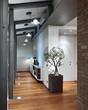 ingresso con parquet e vaso con pianta da appartamento