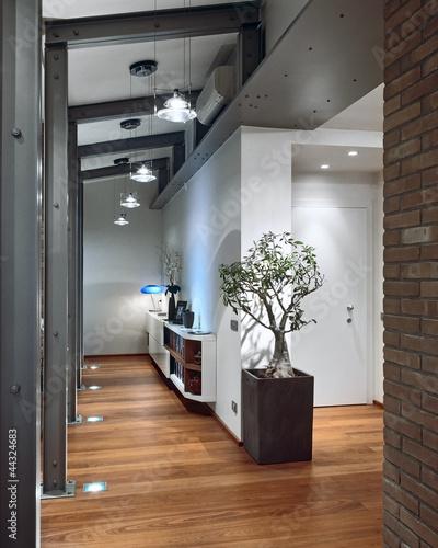 Ingresso con parquet e vaso con pianta da appartamento immagini e fotografie royalty free su - Piastrelle simili al parquet ...