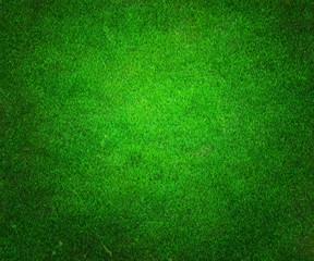 Golf Green Background