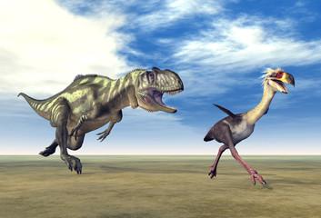 Yangchuanosaurus und Phorusrhacos