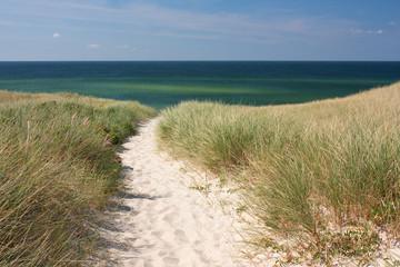 Fototapete - Weg zum Strand durch Dünen bei Kampen auf Sylt an der Nordsee
