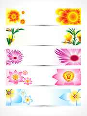 abstract multiple floral banner set
