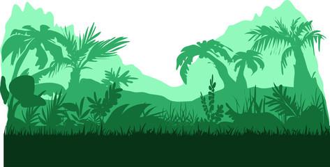 Jungle of rainforest
