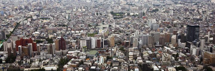 tokyo, japan: shinjuku cityscape