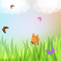 Colorful butterflies flying over green grass