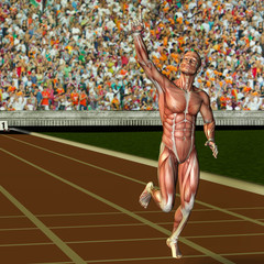 Wall Mural - Muskelaufbau männlicher Sportler in Siegerpose