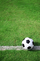 soccer ball field.