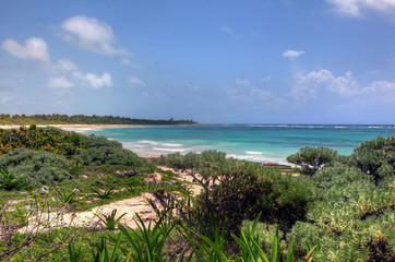 Tropical coast line in Mexico