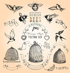 Vintage Style Birds, Bees and Banners Vector Set