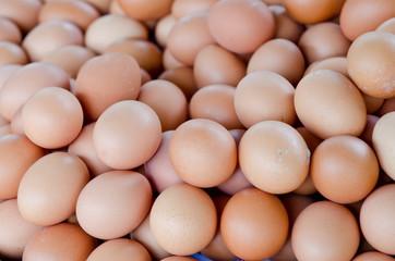 Group of fresh eggs