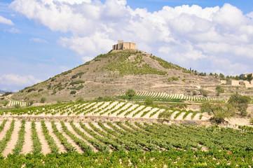 Wall Mural - Viñedos junto al castillo de Davalillo, La Rioja (España)