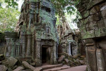 Im Innern des Ta Prohm, Kambodscha