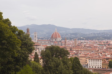 Looking over the rooftops of Florence, Italy.