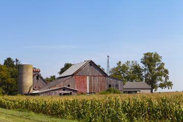 Ruin Farm